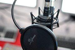 Microphone CC photo credit Riemer Palstra